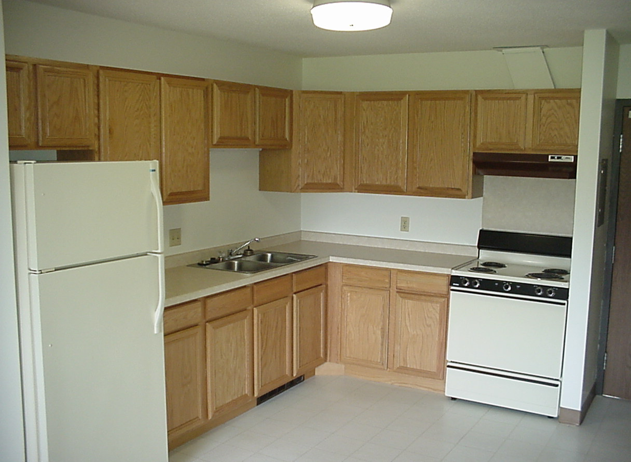 Typical kitchen setup - stove and refrigerator included in unit